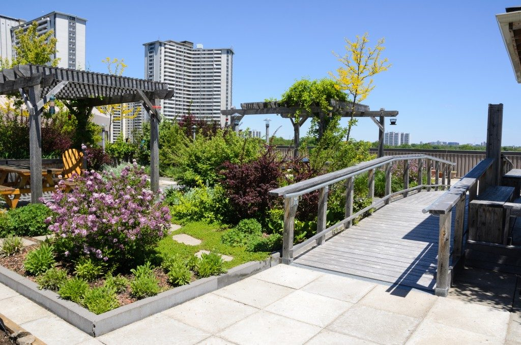 Rooftop garden of a commercial building