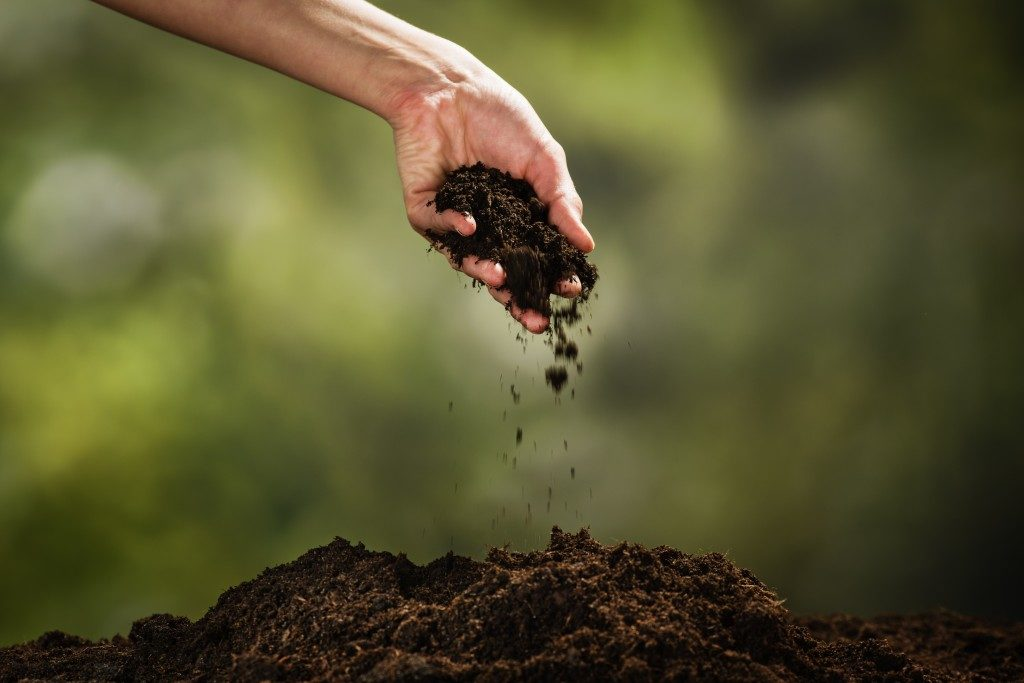 hand touching the soil