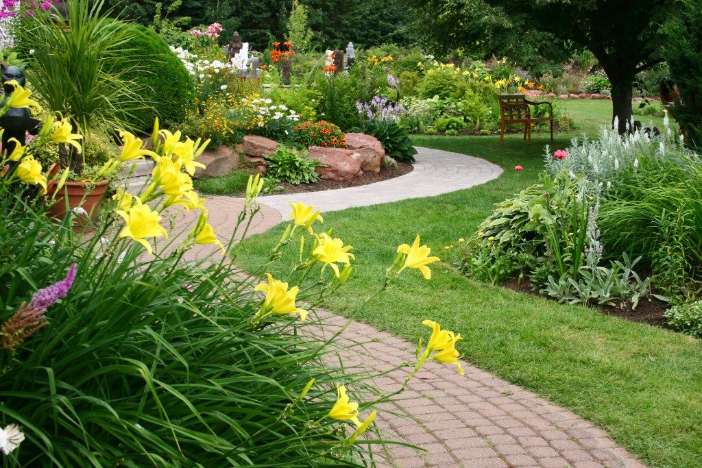 Garden landscaping with pathway